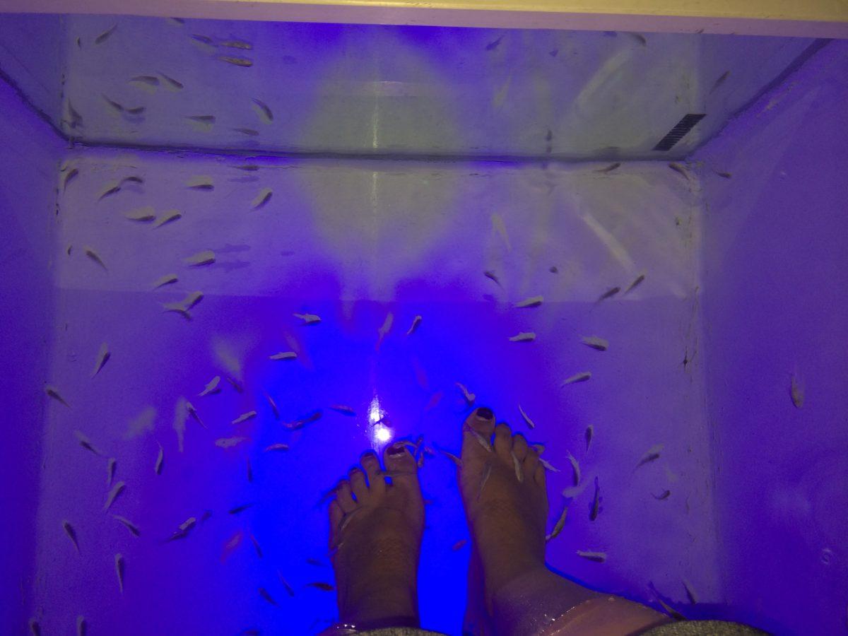 J'ai testé : le Fish Spa (oui, les petits poissons qui grignotent tes pieds)