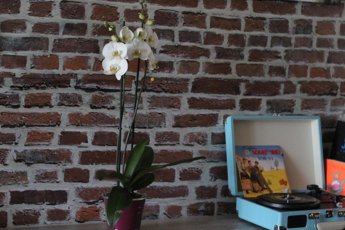 Offrir Des Fleurs C Est Toujours Une Bonne Id E Avec Interflora