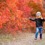 Suisse : La crèche en forêt remporte un immense succès